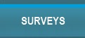 Browse Surveys